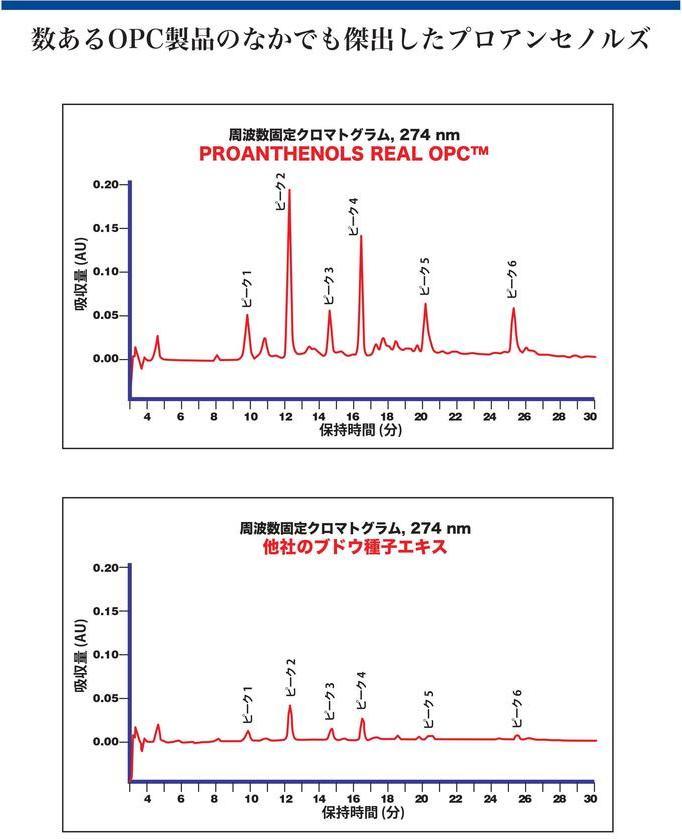 オリゴメリックプロアントシアニジン(OPC)吸収量を比較したクロマトグラム