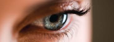 ピクノジェノールの目への効果・効能