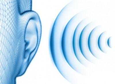 ピクノジェノールの耳鳴りへの効果・効能